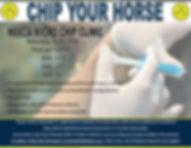 Microchip Clinic Poster.jpg