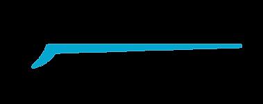 פירוק צורניות לוגו-01.png