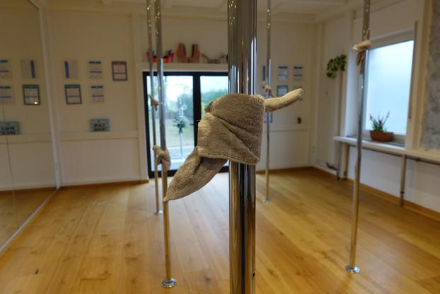 Poledance - Raum