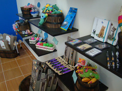 Browse our boutique shop!