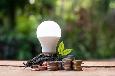 LED bulb with growing plant - Concept o