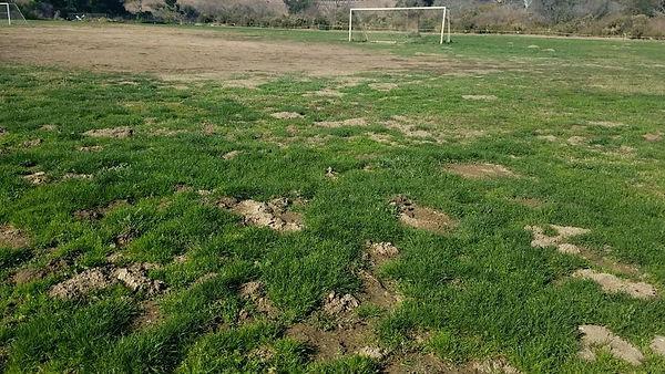 River Bend Fields.jpg