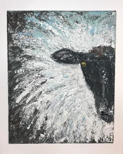 Abstract sheep