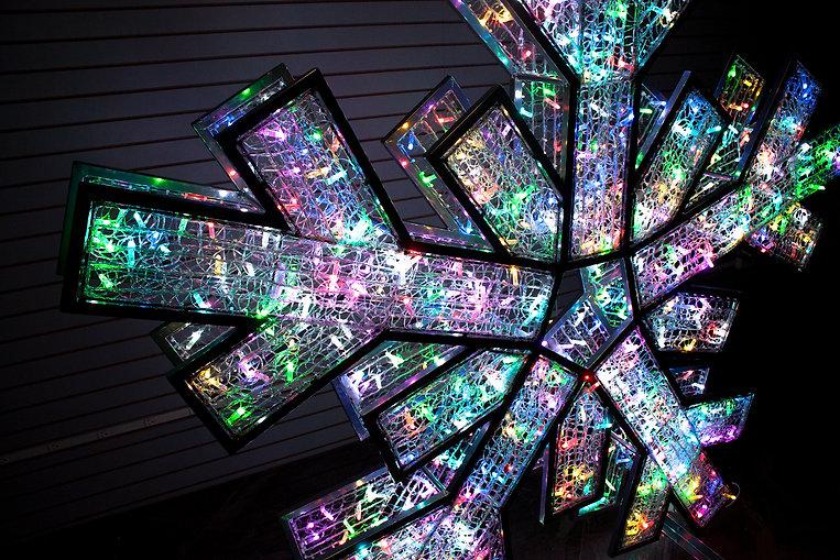 FDS RGB Snowflake 3.jpg