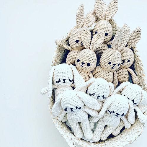 Hello Bunny Toy