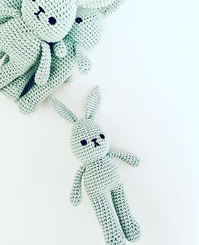 Mint Hello Bunny