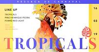 tropicals 2 arte.png