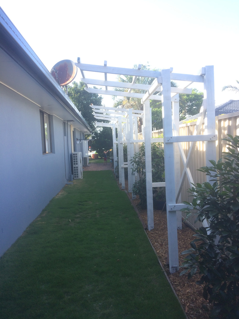 western side of house with new trellis