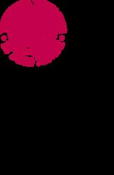 CF+ST.UMAN logo pos vert P207.png