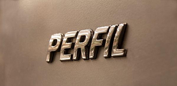 PERFIL 01.jpg
