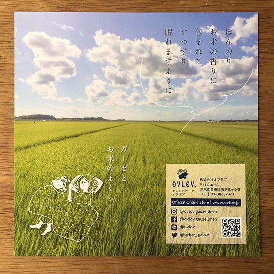 進士遙 Haruka Shinji イラスト illustration デザイン design リーフレット leaflet オブラブ OVLOV