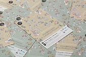 進士遙 Haruka Shinji イラスト illustration すみゆめ 隅田川 森羅万象 墨に夢