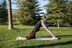 Alex Yoga 3