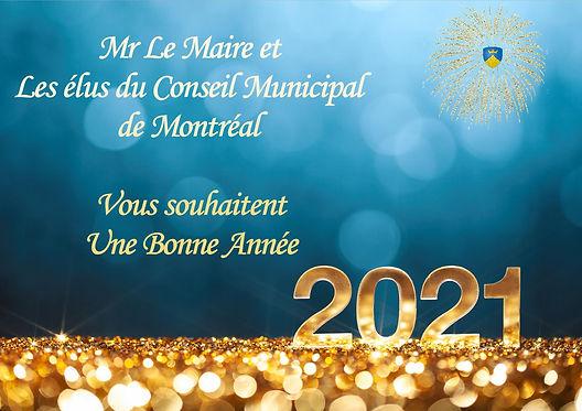 Voeux mairie 2021-211.jpg