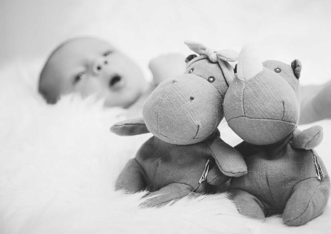 Babys erste Freunde