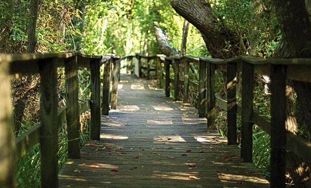 sea pines forest preserve hiltonhead island