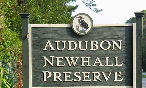 audubon newhall preserve hilton head island