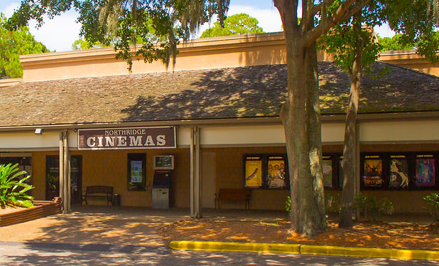 northridge cinemas 10 -hilton head movie theaters