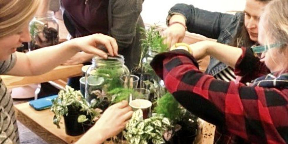Rainforest Terrarium Workshop