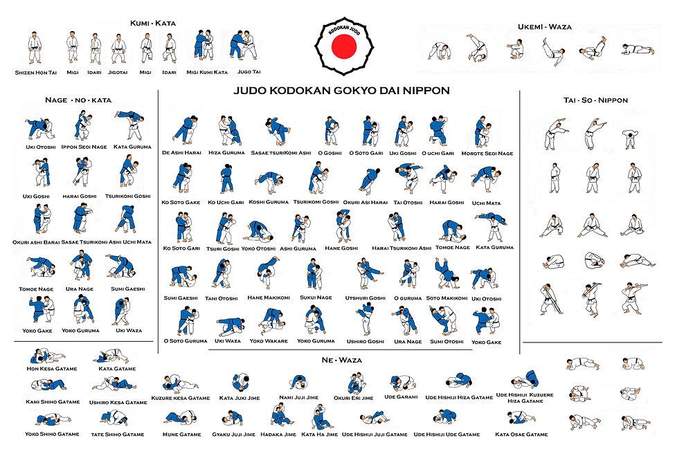judo kodokan gokyo dai nippon Color Fina