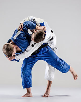 Judo-game-HD-picture-04.jpg
