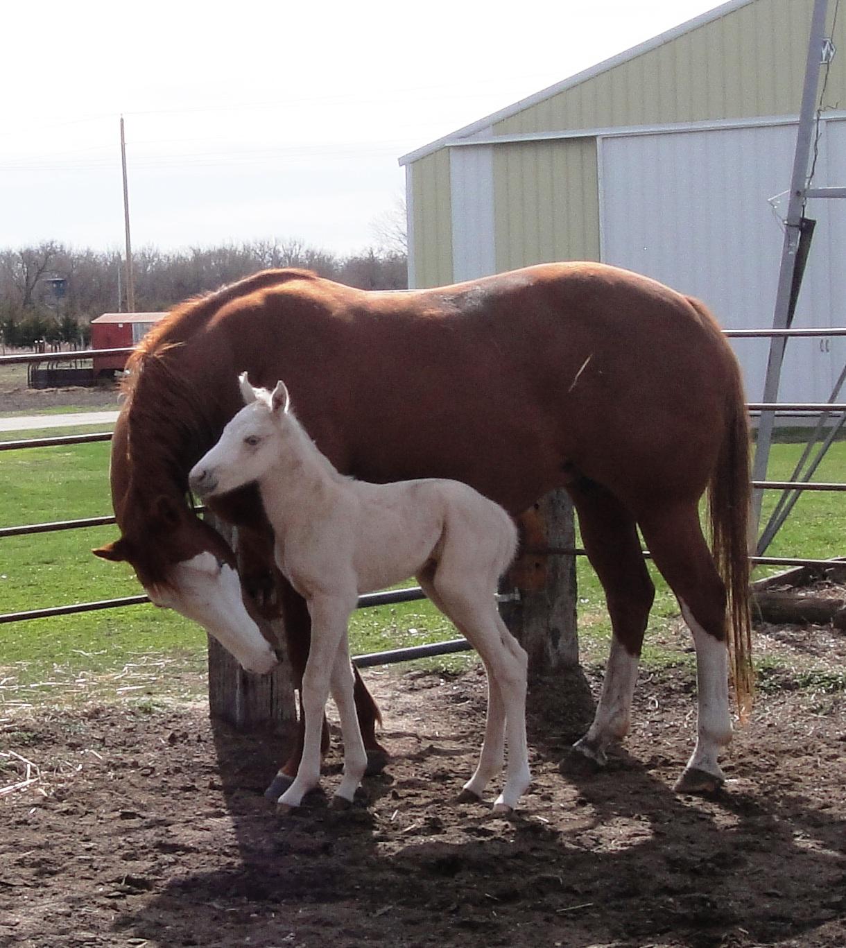 Mama Rosie/baby