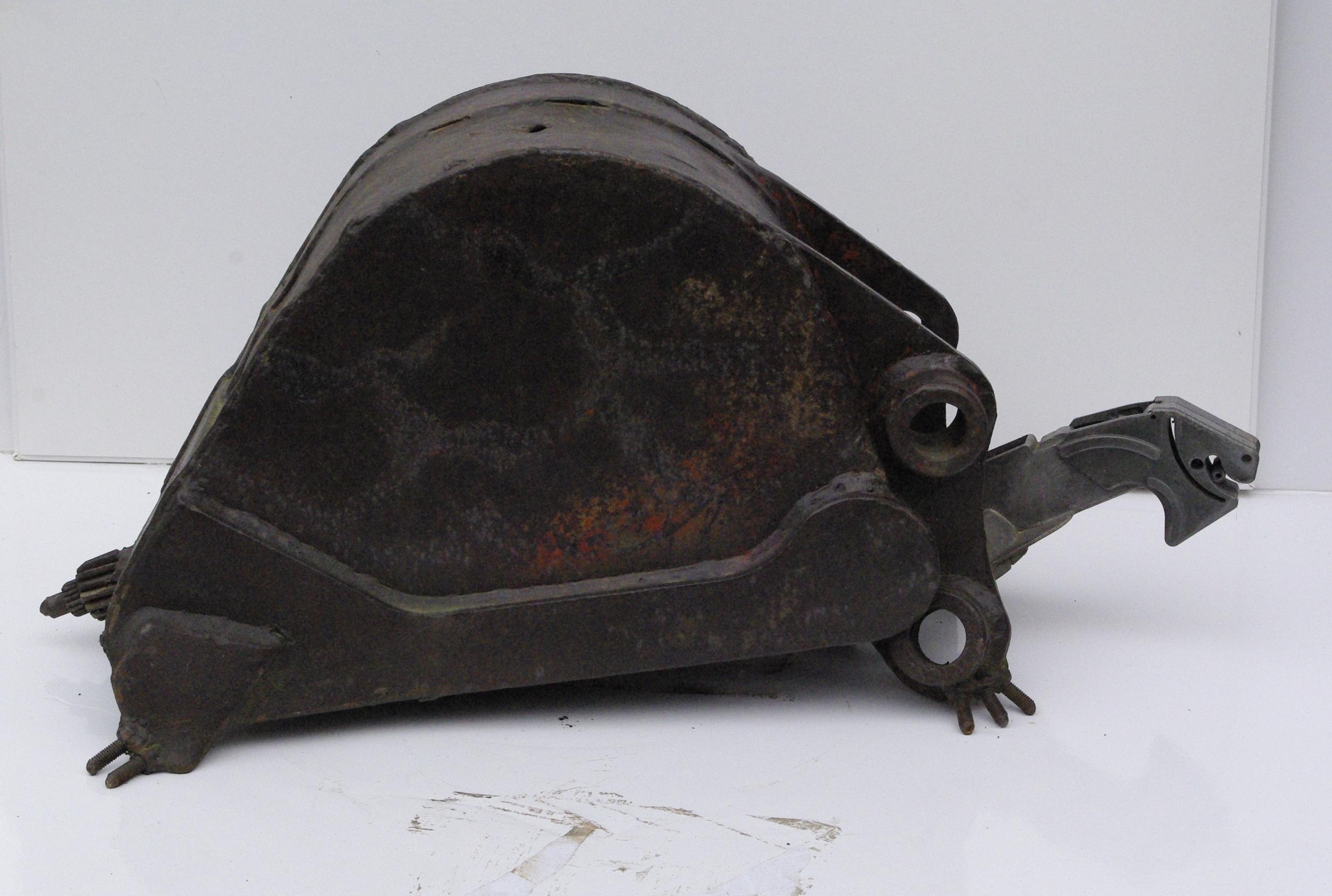 turtle.1 | 1999