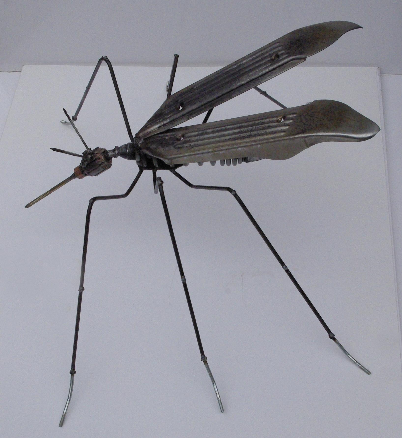 zanzara.1 | 2014