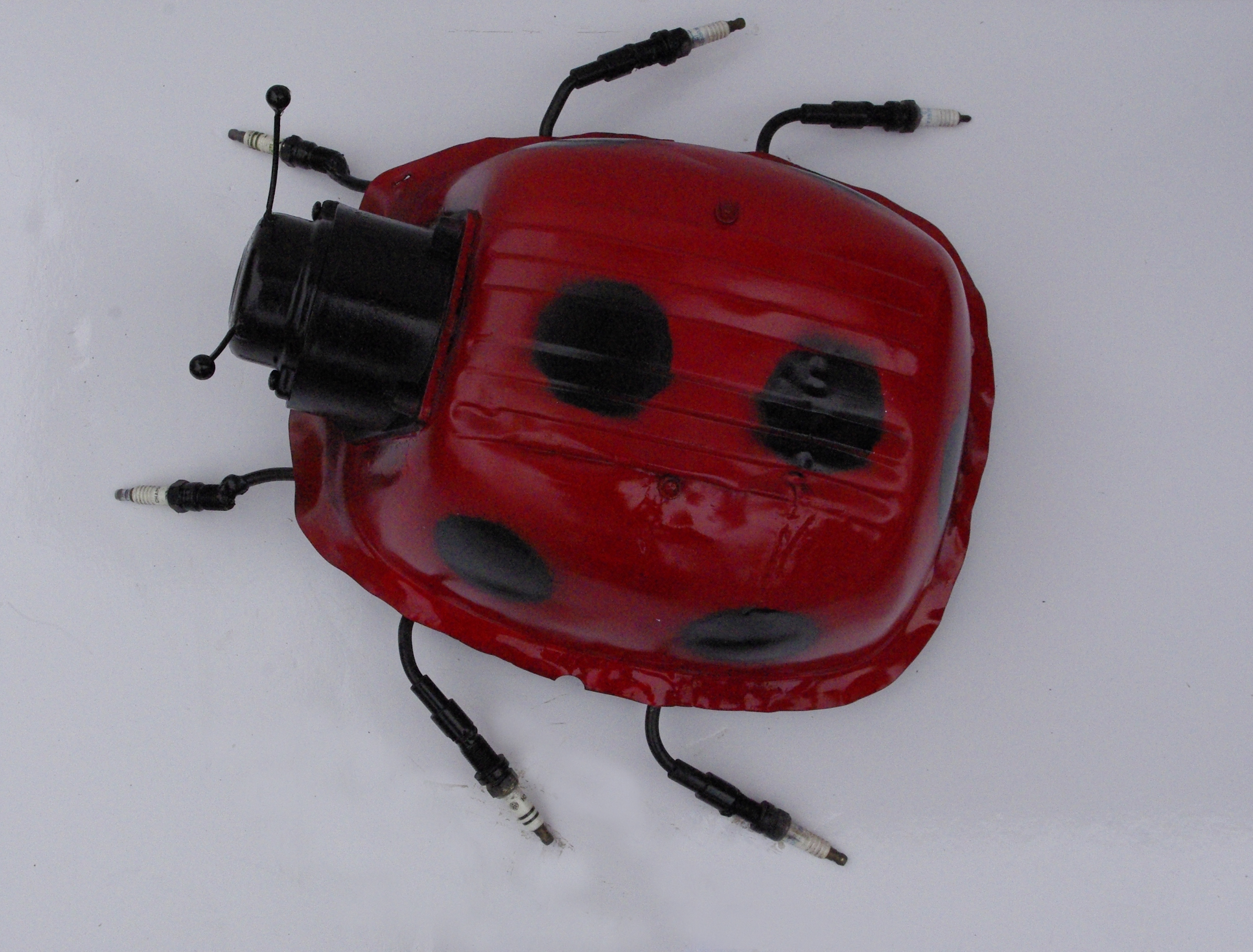 ladybird.1 | 2003