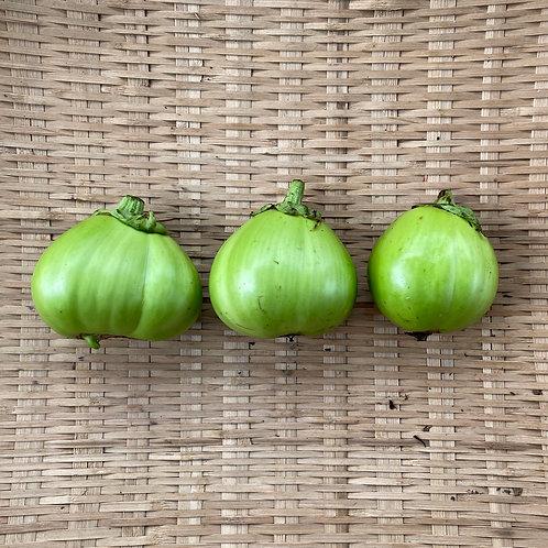 埼玉青大丸茄子