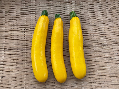 ズッキーニ(黄色)