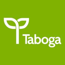 Taboga