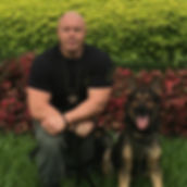Police, Security, Detection Canine Training