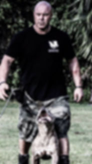Advanced Dog Training - Off Leash Dog Training
