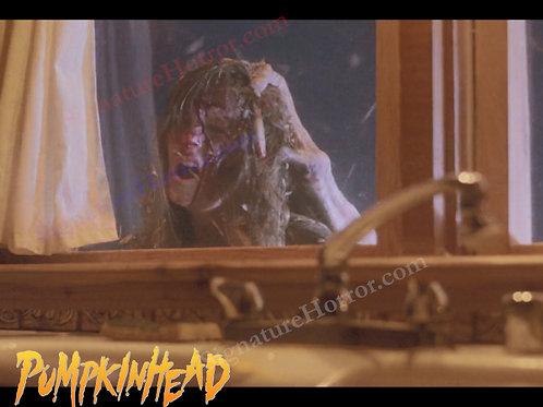 Kerry Remsen - Pumpkinhead - Window 3 - 8X10