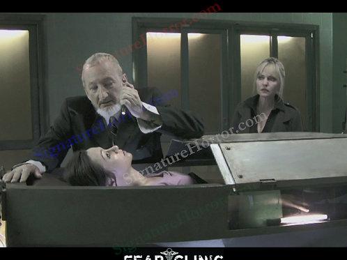 Lisa Wilcox - Fear Clinic - Scotophobia 1 - 8X10