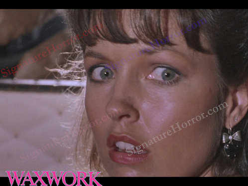 Deborah Foreman - Waxwork - Attic 4 - 8X10