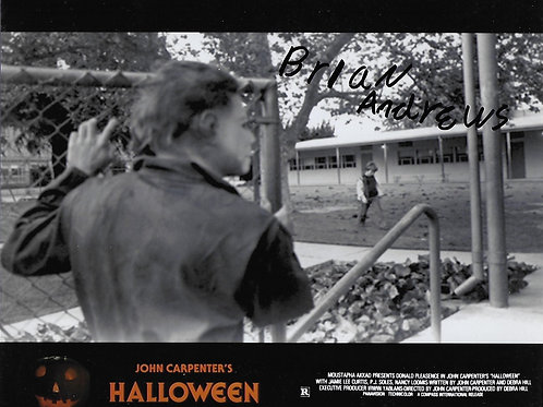 Brian Andrews signed 8X10 Schoolyard Shape