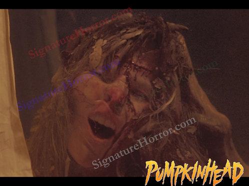 Kerry Remsen - Pumpkinhead - Window 8 - 8X10