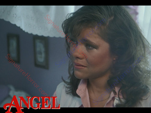 Donna Wilkes - Angel - Home Inspection 9 - 8X10