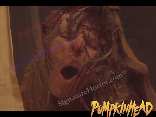 Kerry Remsen - Pumpkinhead - Window 7 - 8X10