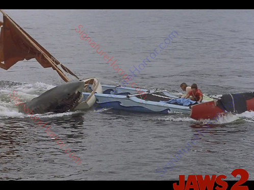 Donna Wilkes - Jaws 2 - Final Attack 12 - 8X10