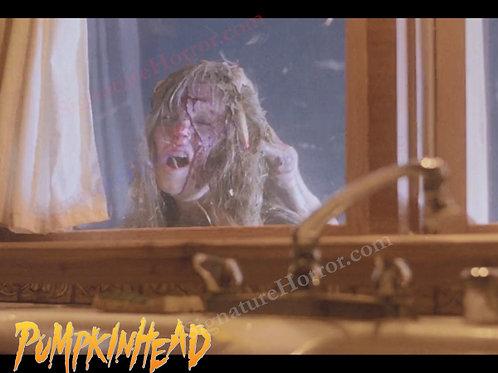 Kerry Remsen - Pumpkinhead - Window 4 - 8X10