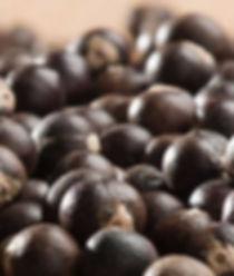 Acai Berries Oil