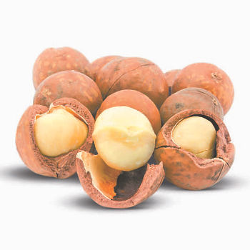 Macadamia Oil Water Soluble