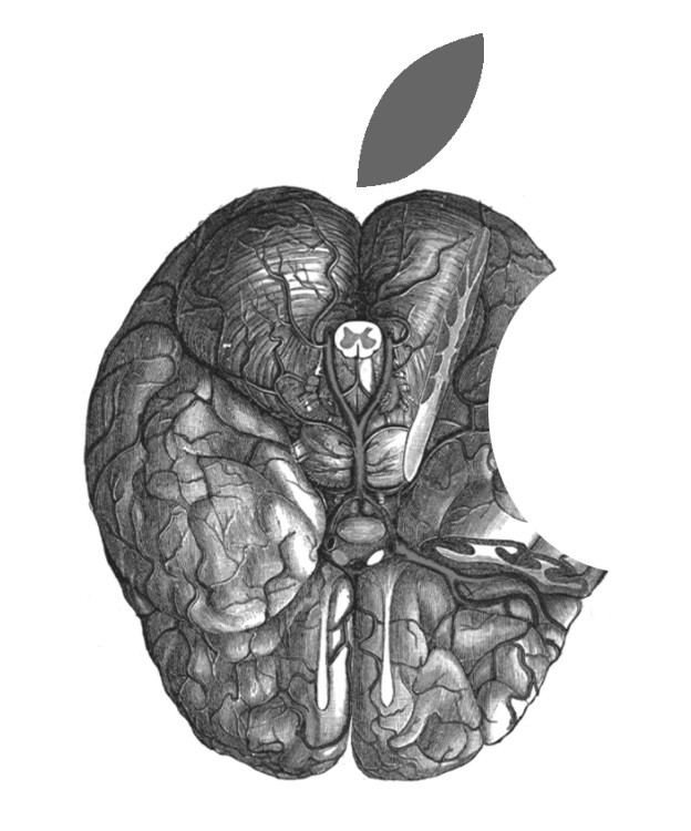 An illustration of a brain in the form of the Apple logo