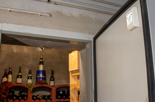 SQUIDD Home installé sur une cave à vin