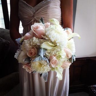 Round Blush roses