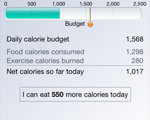 Log Your Food to Reach Your Goals