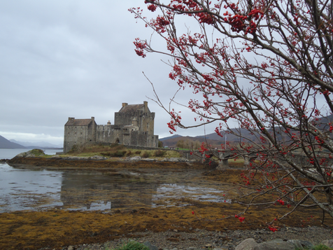 Eilean Donan with Branches.png